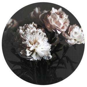 8-7011-208-9-Circle-Art-Baroque-90cm.jpg