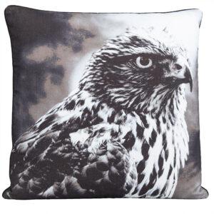 1-1099-149-5-Eagle-Cushion-Grey-45×45-1.jpg